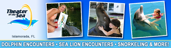 Theater of the Sea - Dolphin Encounters